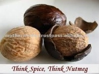 High Quality Nutmeg / Jaiphal Oil Suppliers In India