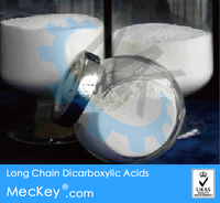 Manufacture Long Chain Dicarboxylic Acids plant