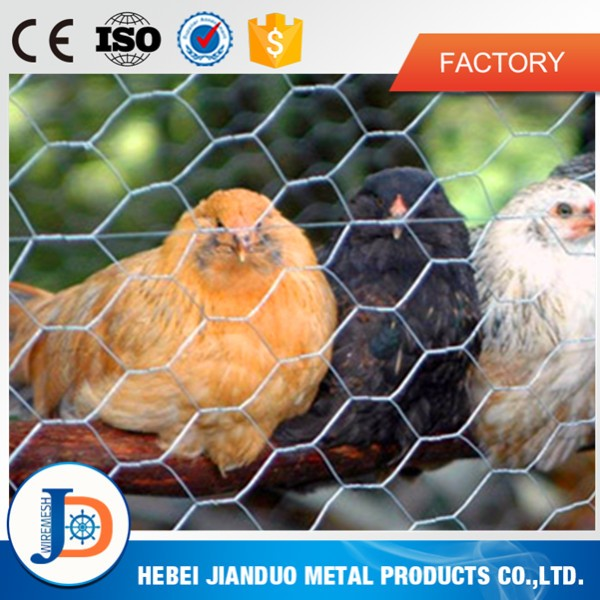 Hexagonal Wire Netting / Green PVC Poultry Hex Netting / Aviary Game Bird Chicken Wire Fence