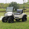 2 seater Electric Golf buggy without Roof and light kits