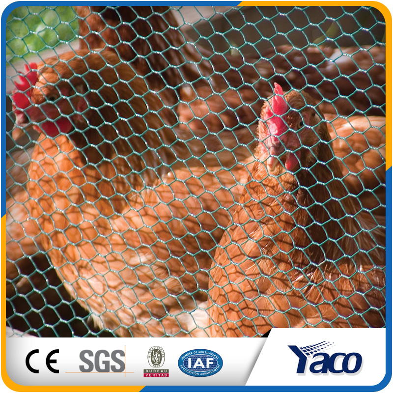 Long work life factory customized galvanized bird animal cages hexagonal wire mesh