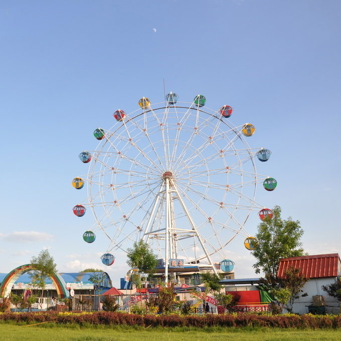 6 seats amusemnet family mini/small electric ferris wheel for sale with best price