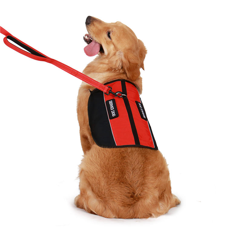Service dog harness for big dog training harness therapy harness