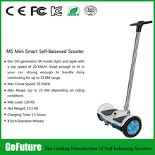 2 Wheel Electric Scooter 8 inch bluetooth 2 wheel self balancing scooter 700w Electric Hoverboard
