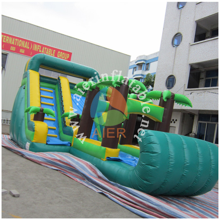 Pvc Tarpaulin Tropical Inflatable Slip And Slide,Adult Dry Bounce Slides