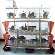 decorative rabbit fencing /rabbit cages /stainless steel welded wire fence producted by china suppliers