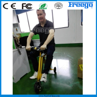 One Year Quality Guaranteed Gyros Freego Two Wheel Smart Balance Electric Scooter Mini Bike