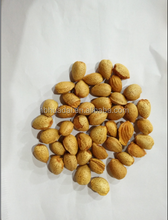 Chinese almond badam nut dried fruit pearl