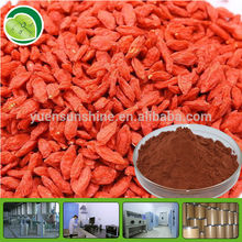 Yuensun GMP top quality goji berry/extract
