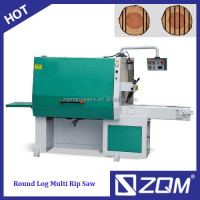 Auto feeding multi-blade round log rip saw