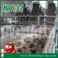 Turnkey project industrial apple clear juice production line