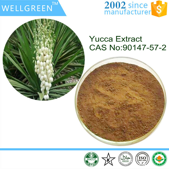 High Quality Yucca Plant Extract For Pet Food