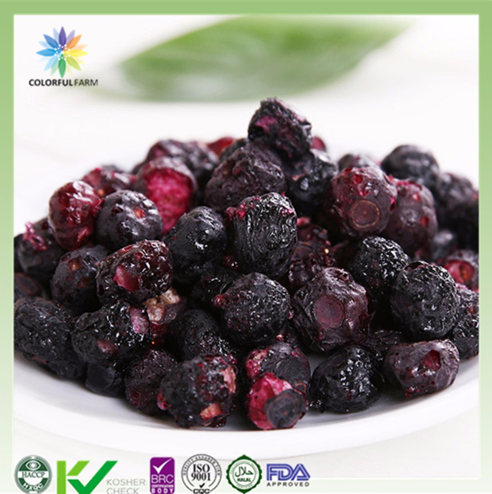 freeze dried blueberry for healthy fruit snacks