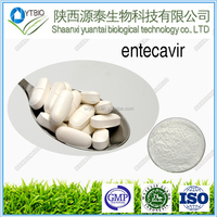 Best Price entecavir 99% powder/CAS NO:142217-69-4