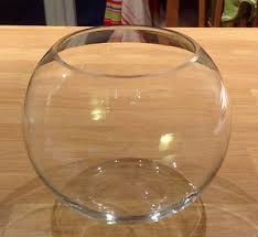 fish bowl glass vase