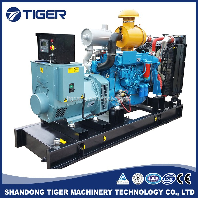 240kw 260kw 280kw 300kw factory price longer warranty Chinese power diesel generator