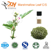 /product-gs/cigarettes-material-common-marshmallow-planting-1501420632.html