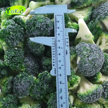 Best Price And Service Wholesale Bulk Frozen Broccoli