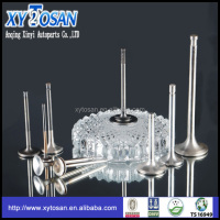 Intake Amp Exhaust Engine Valve For