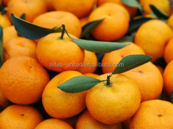 Supply High Quality Fresh mandarin orange/Canned mandarin orange/Baby mandarin