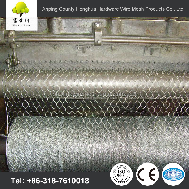supply high quality hexagonal wire netting