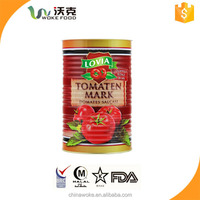 400g*24 tins/Canned Tomato Paste