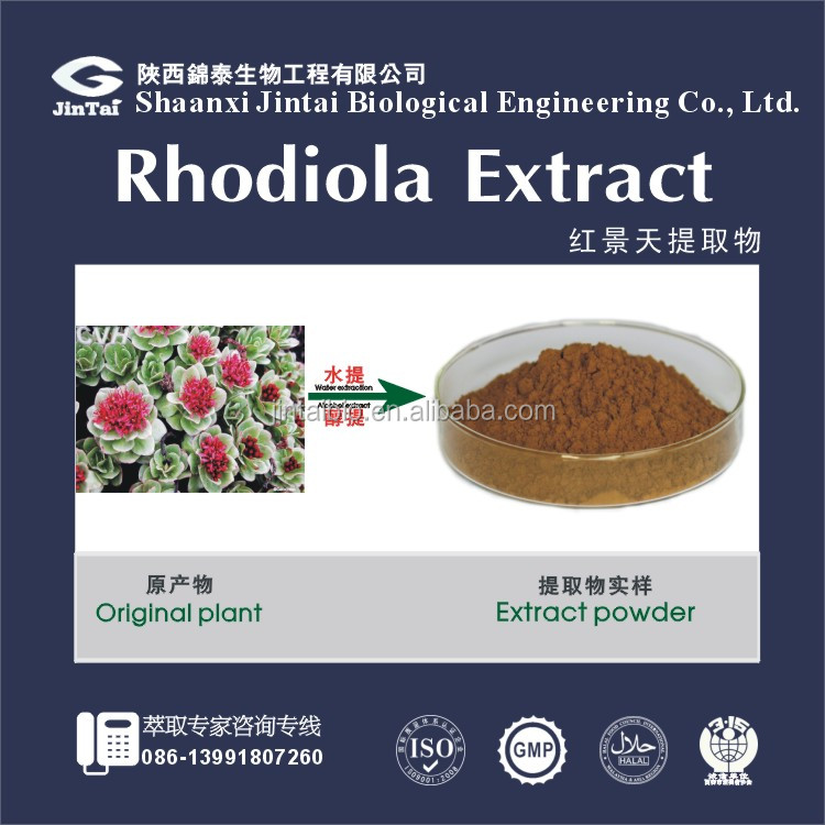 water soluble rhodiola rosea or radix rhodiola extract powder