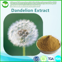 Low Price Best Dandelion Root Extract/Taraxacum Extract Flavonoids