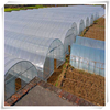Manufacturer Arch Type Greenhouse