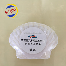 brand name hotel bath toilet soaps