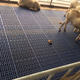 Plastic goat flooring used plastic slat floor for sheep farming equipment