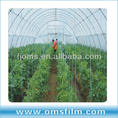agricultural poly tunnel greenhouse