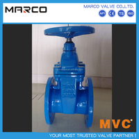 Hot selling cast and ductile iron and cast iron flanged non-rising or rising din standard stem gate valve