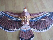 eagle kite / chinese traditional kite