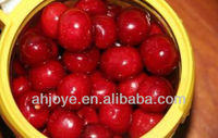 Acerola Cheery extract P.E in high quality