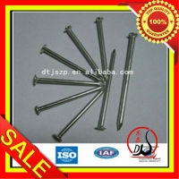 Electric- Galvanized Common Nail From Manufacture