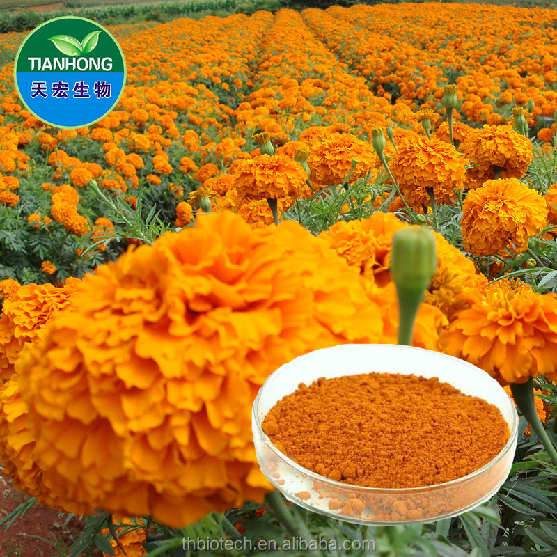 2015 China Manufacturer Pure Natural High Quality Lutein Ester