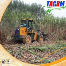 Sugarcane combine harvester for 1 row harvesting China famous sugarcane harvesting mchine