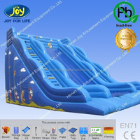 Commercial industrial slip and slide for sale