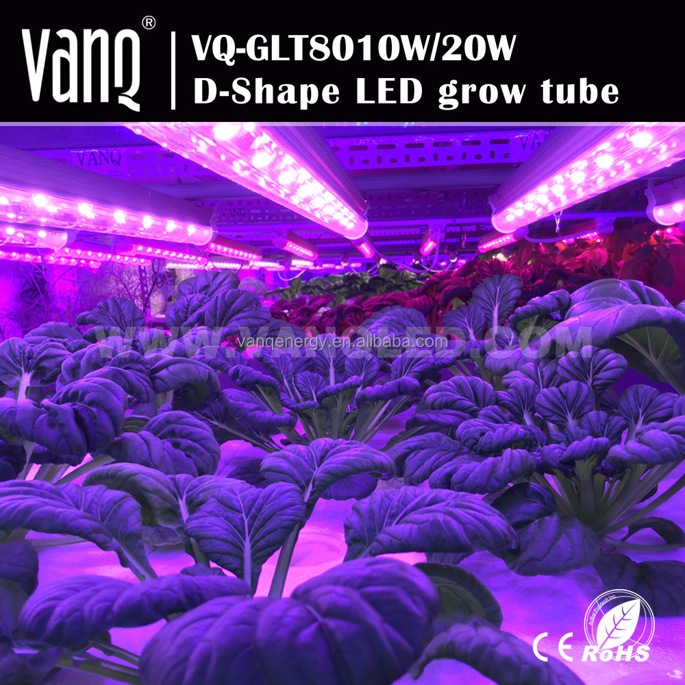 Alibaba best sellers led grow light hydroponic 20w red blue color light