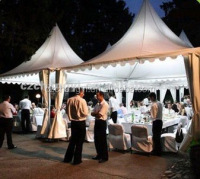 10m Clear Span Cheap Pagoda Trade Show Tent For Reception/Fair Rental Price