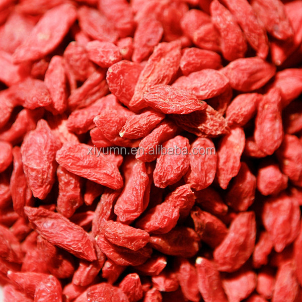 Factory Supply high quality organic bulk Dried Goji Berry / Lycium Barbarum / Wolfberry
