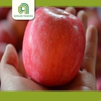 best quality sweet fuji apple/fresh red fruits/organic fuji apples in 2011