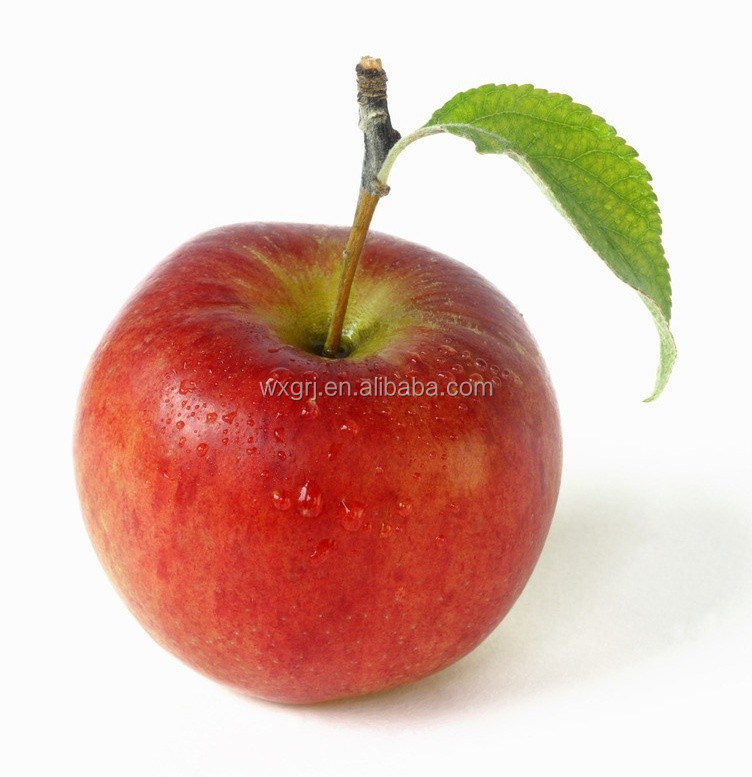 Anti-oxidant Apple Extract Apple Polyphenols&Proanthocyanidin B2