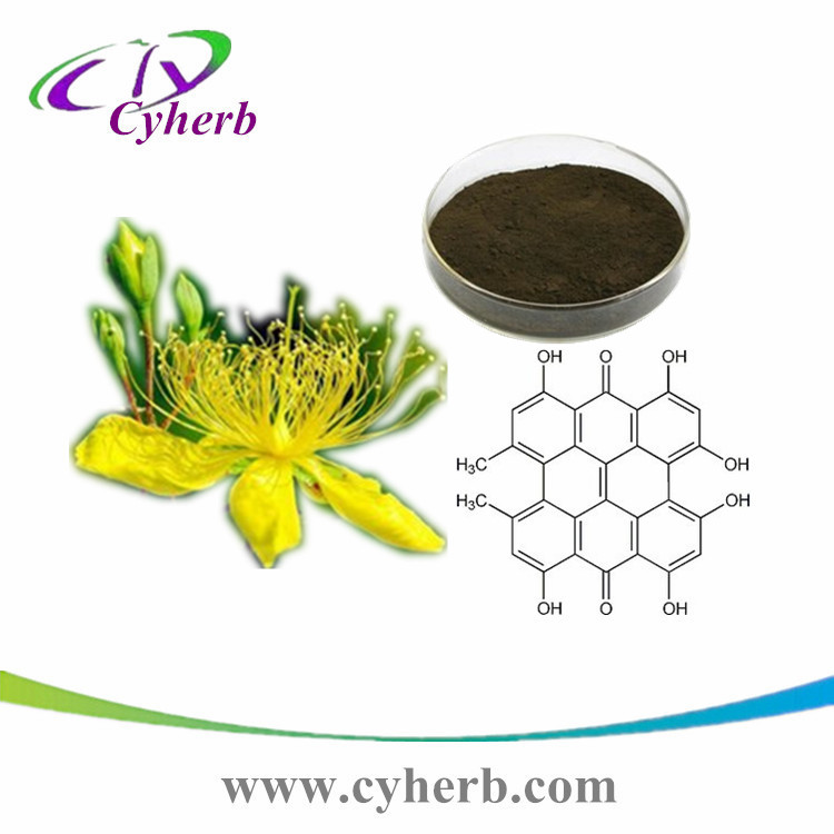 Chinese herb perforatum hypericum extract powder 0.3% hypericin CAS:548-04-9 for anxiety