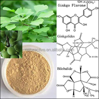 Extract of Ginkgo Biloba Leaf Powder according with CP, EP and USP Standards.