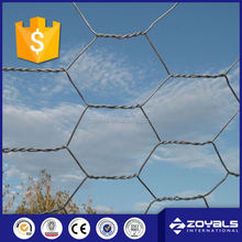 China Anping Galvanized Hexagonal Chicken Wire Mesh