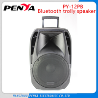 dual 18 inch pro subwoofer speaker box