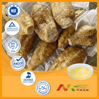 Real GMP Supplier Provide Best Radix Puerariae Lobatae Extract