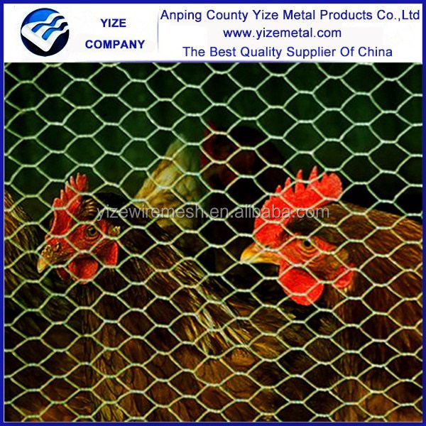 "Cheap price galvanized 3/4"" Cheap Chicken Wire /1/4"" chicken wire mesh factory (Hot sale)"